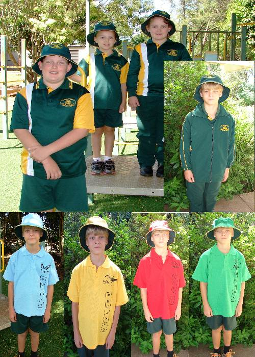 Summer, Winter and sport carnival uniforms
